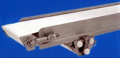 Sanitary Conveyor performs smooth small product transfers.