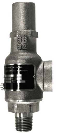 Relief Valve is suitable for cryogenic service.