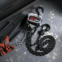 Manual Chain Hoists feature all-stamped steel construction.