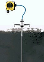 Level Transmitter offers remote housing option.