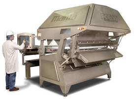 Sorter offers automated inspection of frozen potato products.