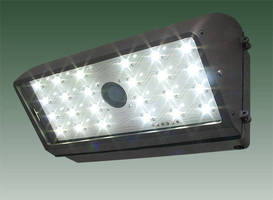 LED Floodlight Luminaire suits wall washing/security.