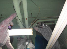 Volunteer Asbestos Removal Using the Super Efficient Grayling QuickTwist(TM) Style Glovebag