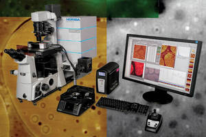 AFM-Raman Microscopes suit physical and life sciences.