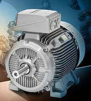 Asynchronous Motors are offered with cast iron housings.
