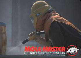 Mole-Master Launches Abrasive Blasting Service for Bins, Silos, Equipment