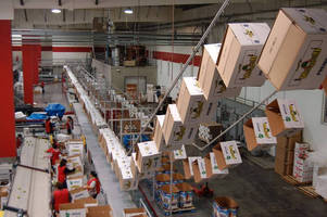 Conveyor System Frees Up Floor Space For Fruit and Vegetable Packing House Operations