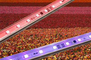 LED Lightbar is designed for optimal plant growth stimulation.