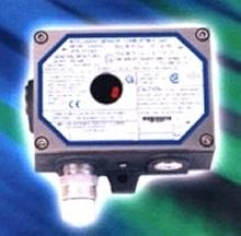 Gas Detector ensures safety in hazardous environments.