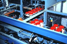 Tray Packing Machine eliminates hand labor.