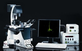 Fluorescence Imaging System facilitates live cell imaging.