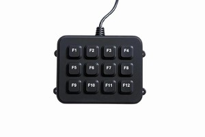 Compact Keyboard has 12 function keys only.