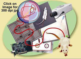 Video Tracking System for Automated Recording of Animal Behavior