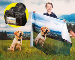 Flocked Fabrics use sublimation ink for colorfast images.