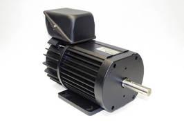 Brushless DC Motors target transportation applications.