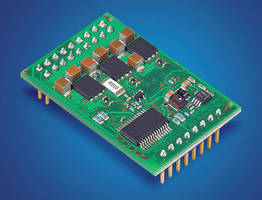 Digital Amplifier Module controls brushless DC motor speed.