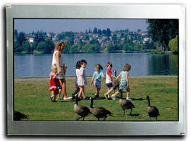 Optrex America Introduces New Compact TFT LCDs