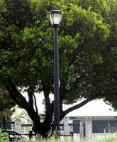 UC Berkeley Relights Campus with Sentry Electric's LED Retrofit Solution